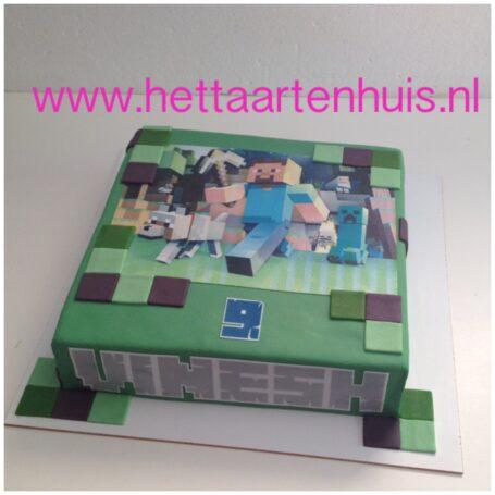 Minecraft taart VINESH